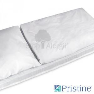pristine-1